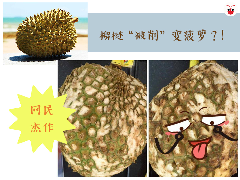 duriancuttopineapple.jpg