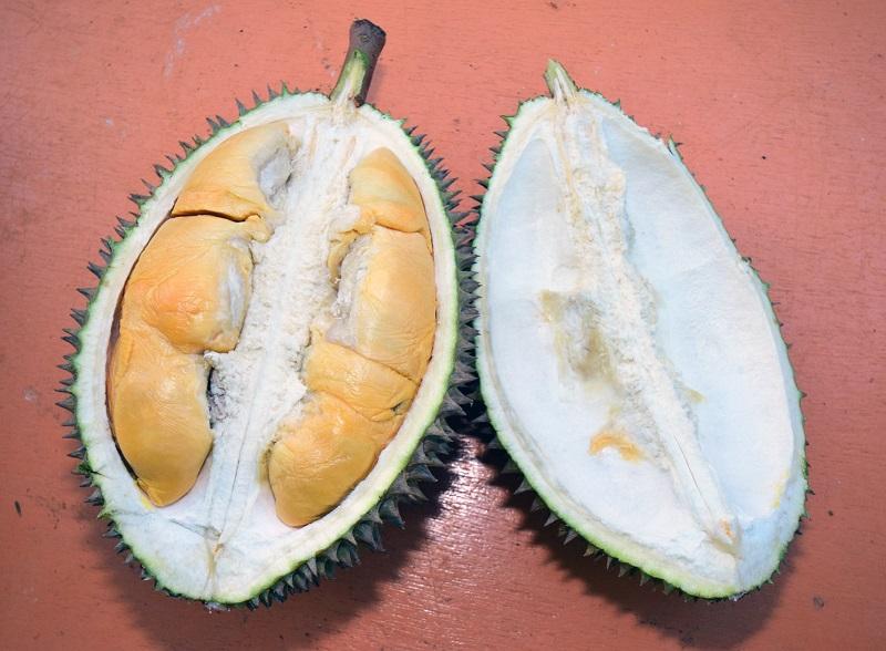 durian shell.jpg