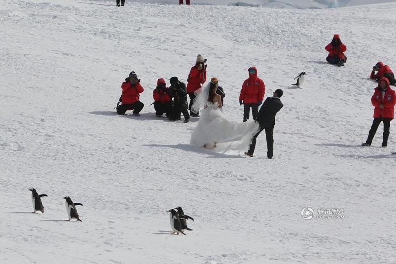 Antarctic wedding photo04.jpg