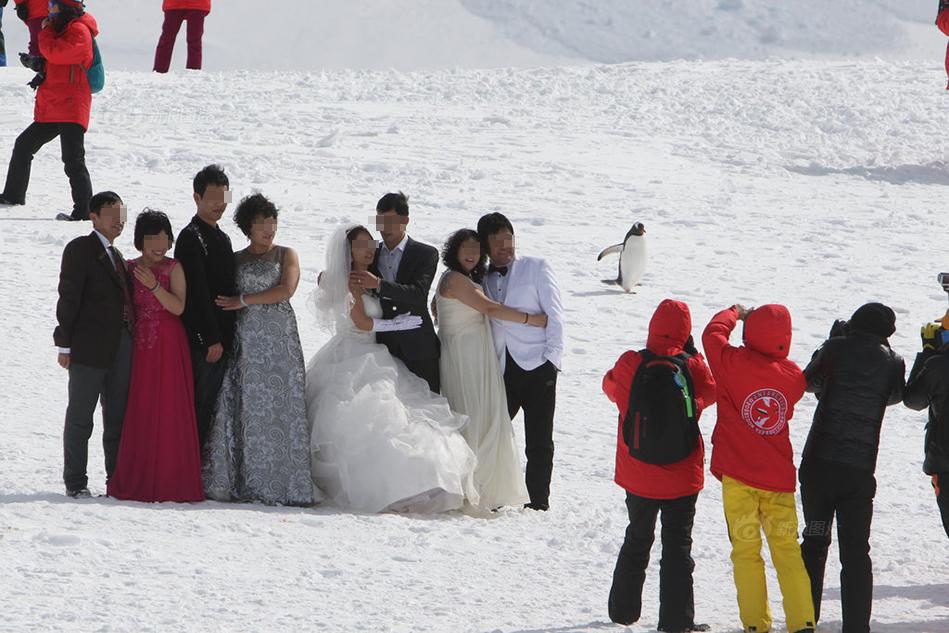 Antarctic wedding photos.jpg