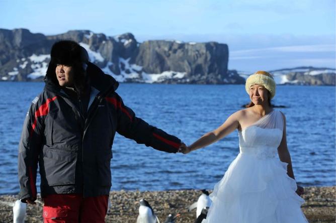 Antarctic wedding photos03.png