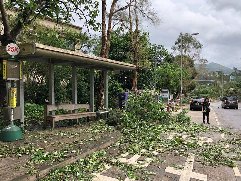 Bus stop after Typhoon.jpg