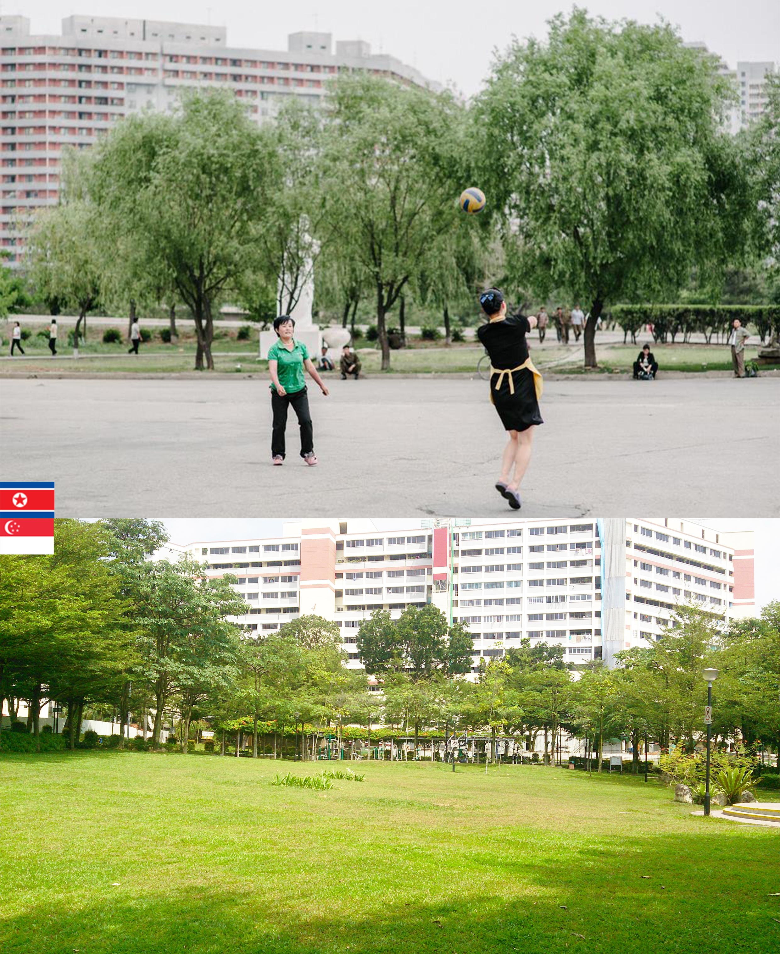 NK2.jpg