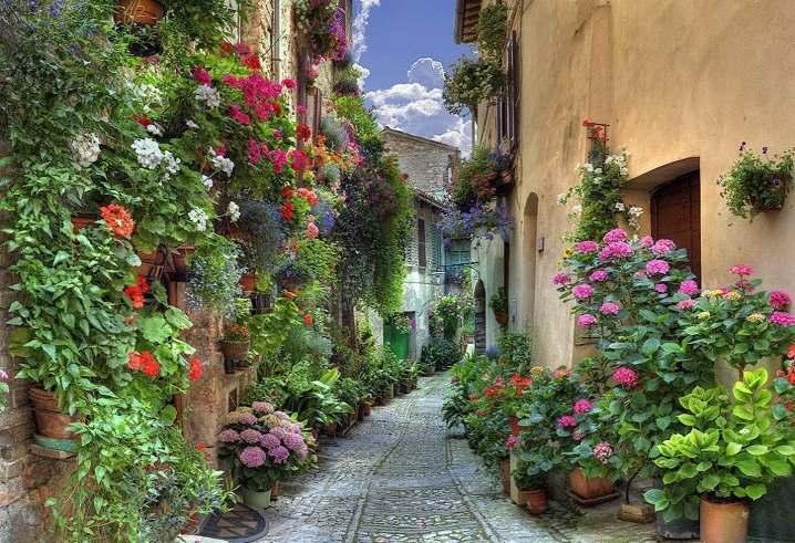 garden-street.jpg
