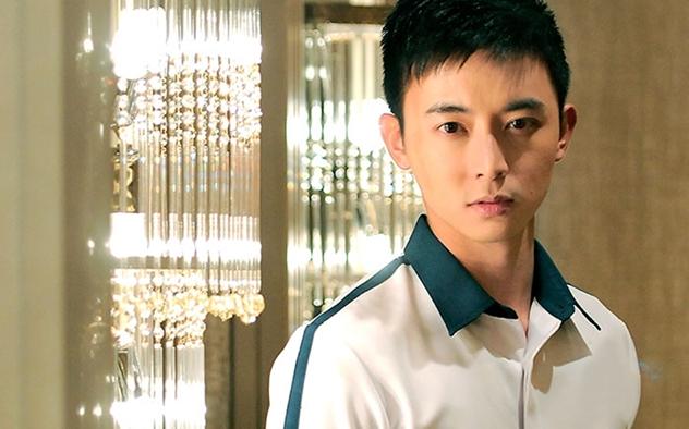 20190124 aloysiuspang role.jpg