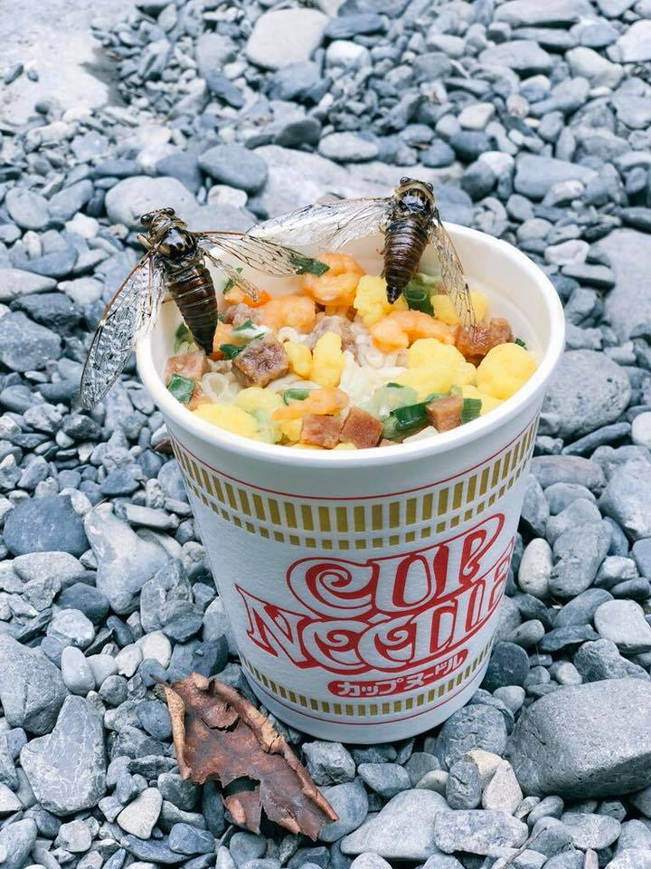 290119 cup noodles bug.jpg