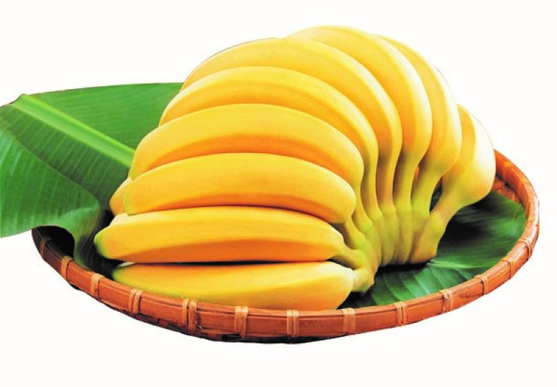 20190227-bananas.jpg