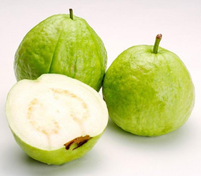 20190227-guava.jpg