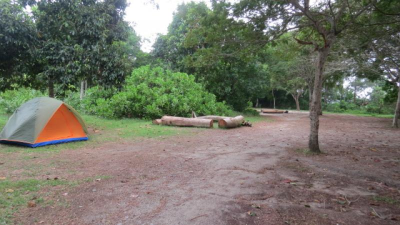 20190301-Jelutong Campsite.jpg