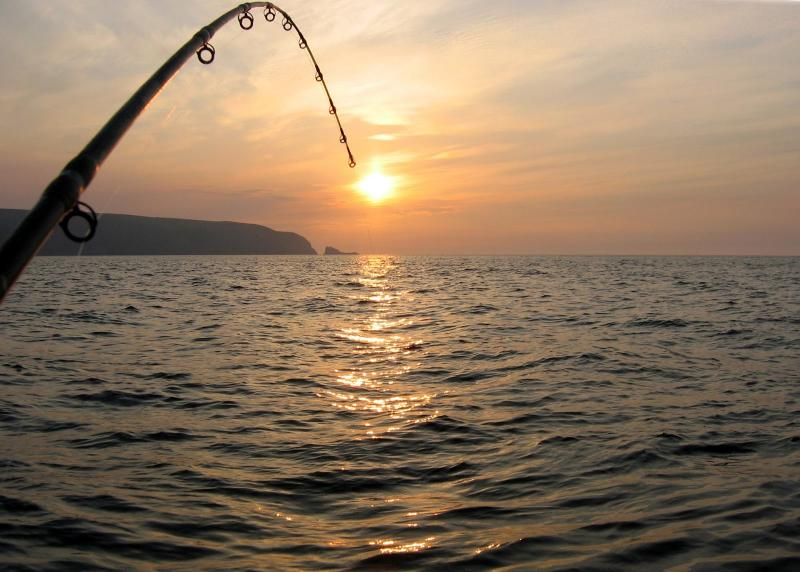 20190301-Pulau Ubin Fishing.jpg