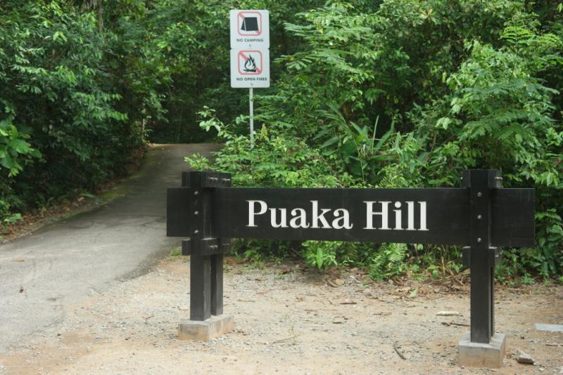 20190301-Pulau Ubin Puaka Hill.jpg