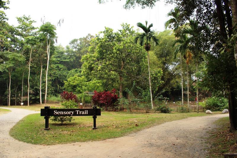 20190301-Pulau Ubin Sensory Trail.jpg