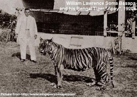 william-lawrence-soma-basapa-and-his-bengal-tiger.jpg