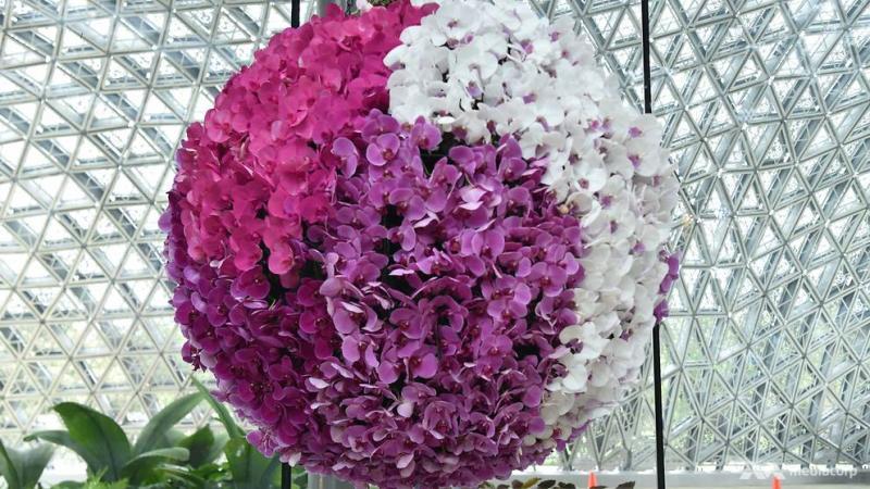 floral-fantasy-3.jpg