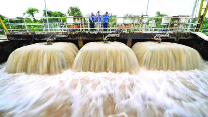 Johor River Ammonia.jpg