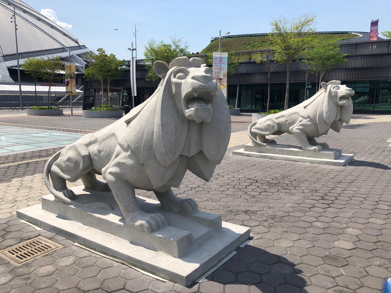 6.3 lion.jpg