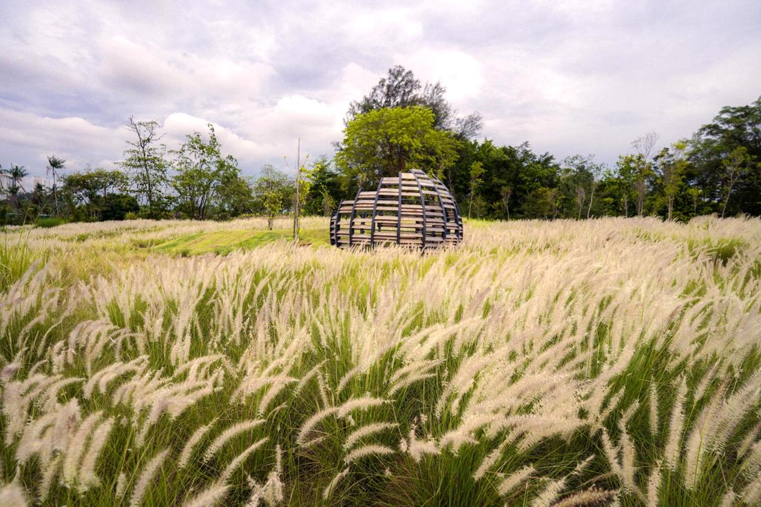 Grasslands.png
