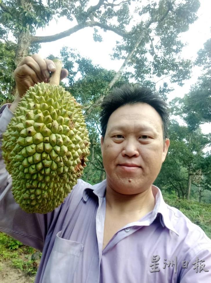 050719 ant durian.jpg