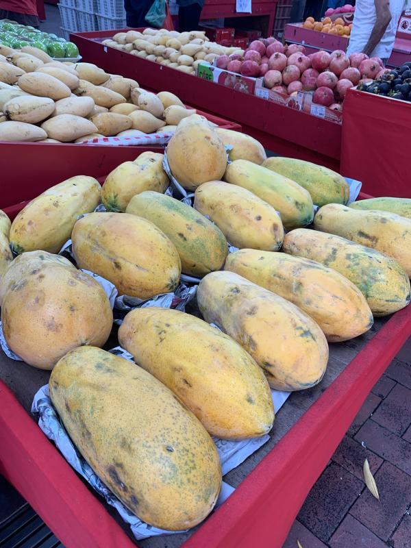 20190919-papaya.jpg