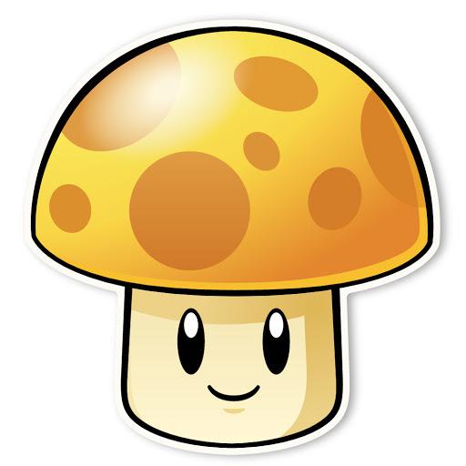 20191107 sunshroom.jpg