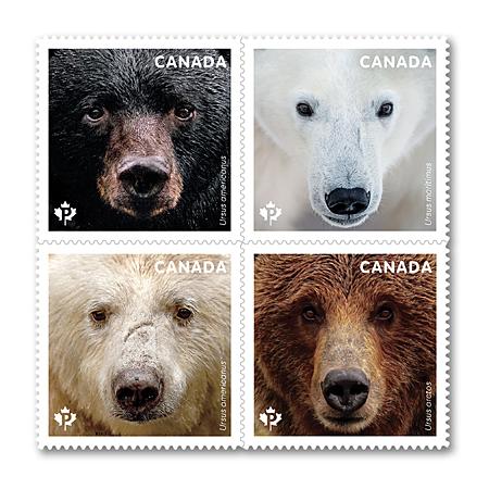 bears-stamps.jpg