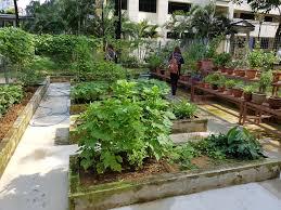 20191112-gardening.jpg