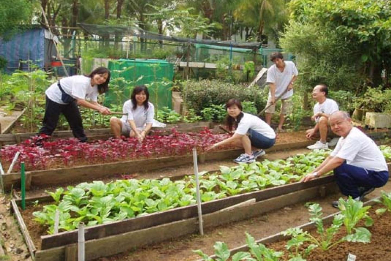 20191112-gardening2.jpg