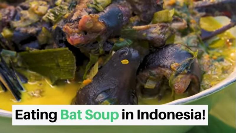 20200130-bat soup.jpg