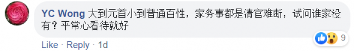 20200224-comment-YC Wong.png