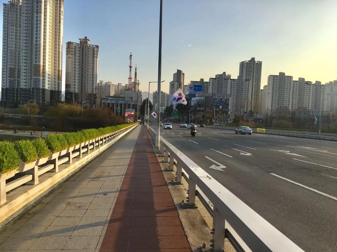 20200316-Korea Daqiu.jpg