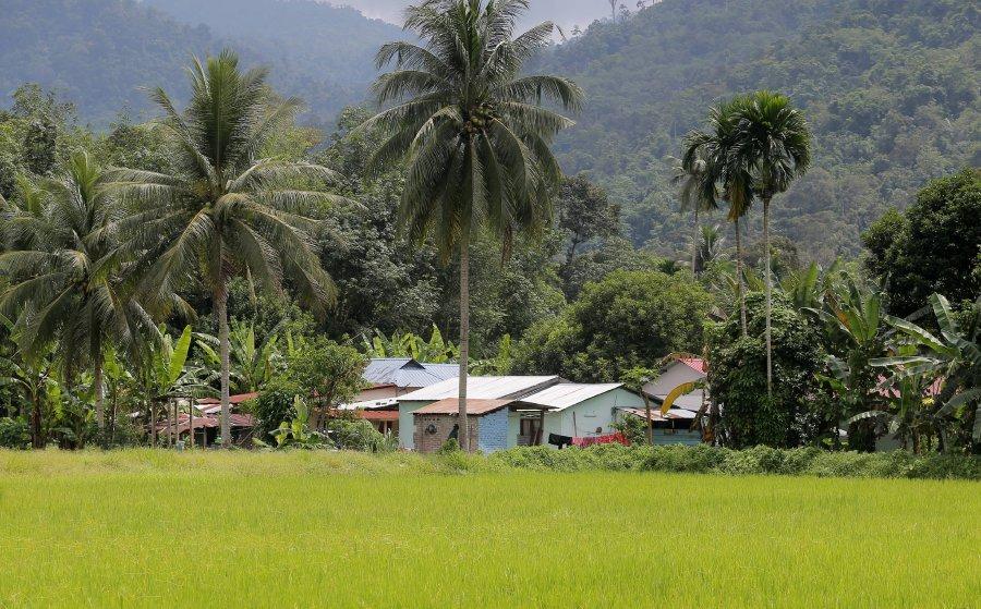 20200427-Malaysia rural areas.jpg