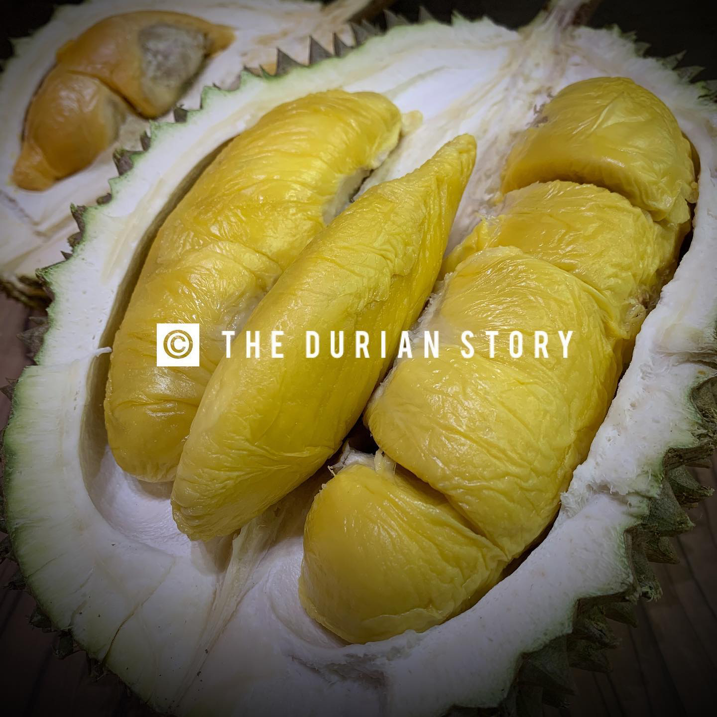 20200608-the durian story.png