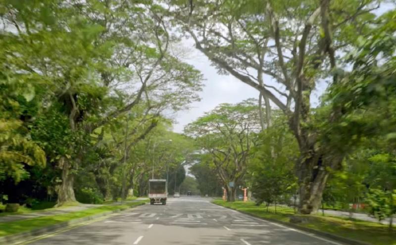20200622-green road.jpg