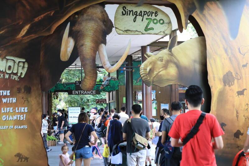 202000720-zoo.jpg