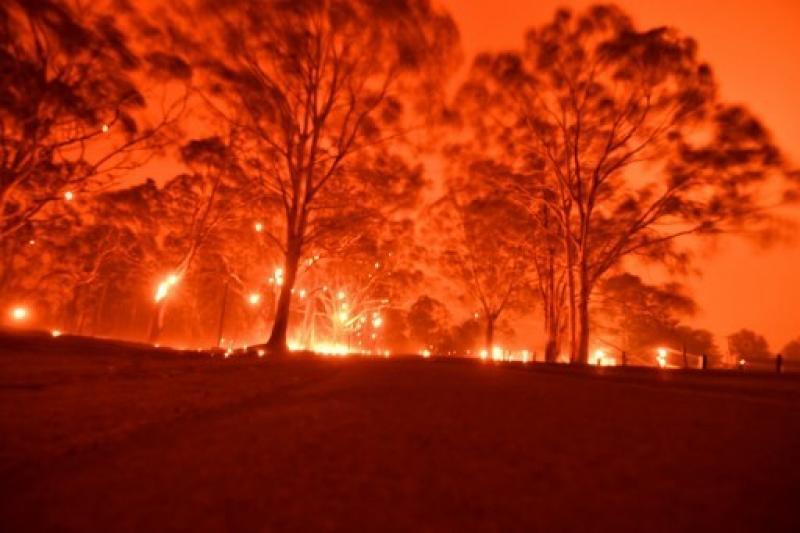 20200730-Australia BUsh Fires.jpg