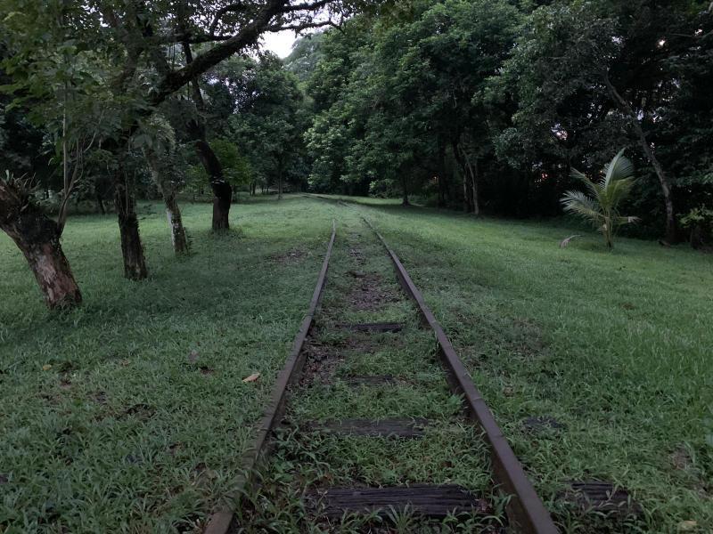 20200730-rail01.jpg