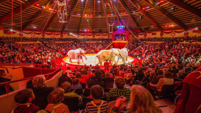 20200818-Circus-Krone.png