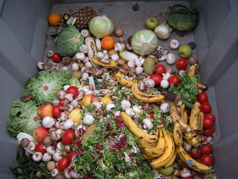 20201120-wasted food.jpg