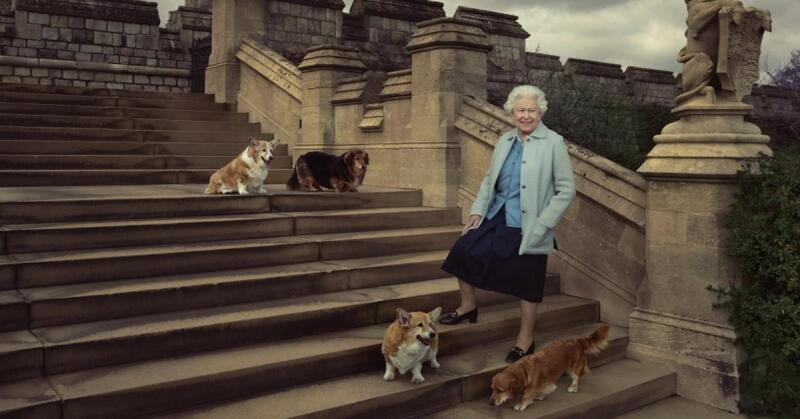 20201209-女王和狗.jpg