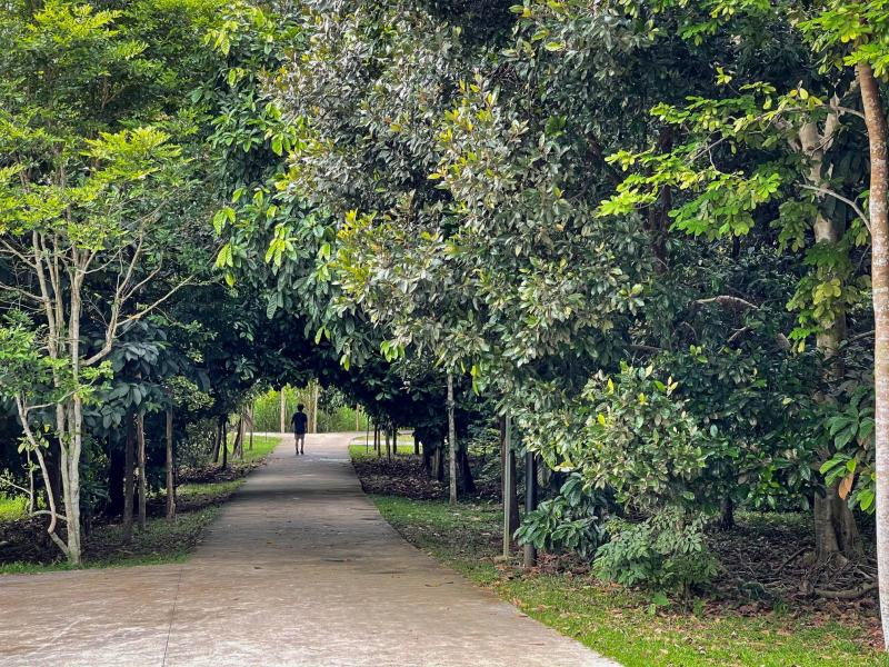 20201231-admiralty park greens.jpg
