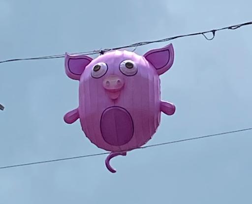 20210118-猪.png