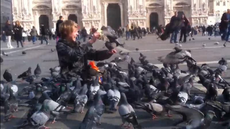 20210119-feed pigeons Milan Duomo.png