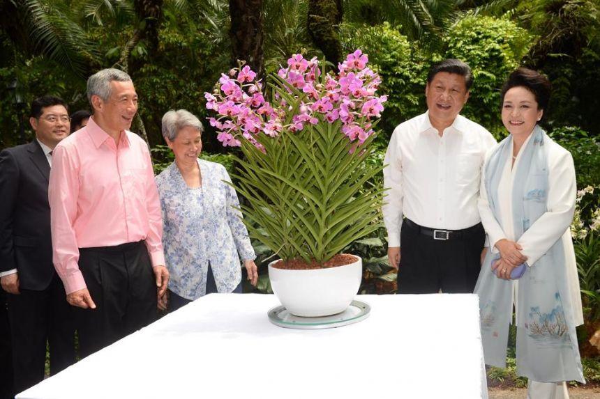 20210210-Papilionanda Xi Jinping-Peng Liyuan.jpg