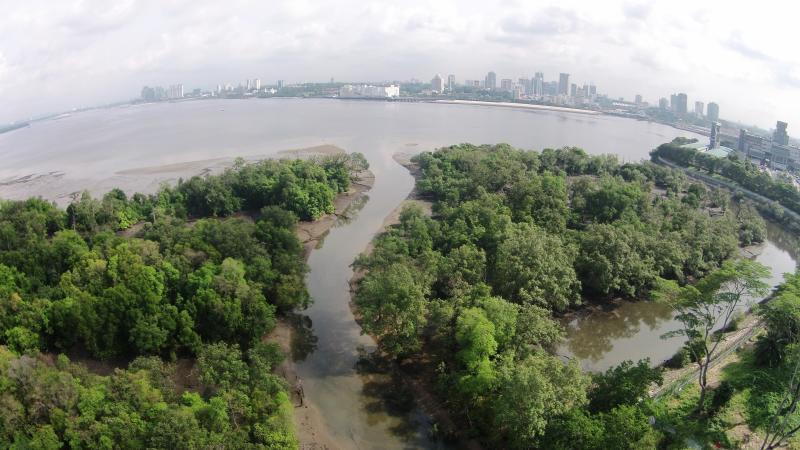 20210222 - 万礼红树林和滩涂.jpg