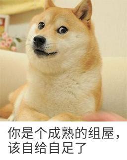 20210405biaoqingbao dog.jpg