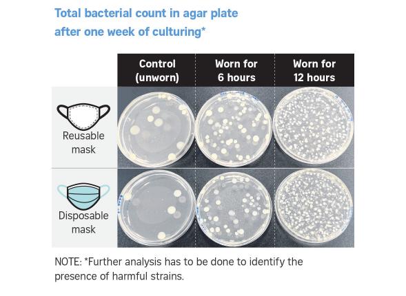 20210412-细菌.png