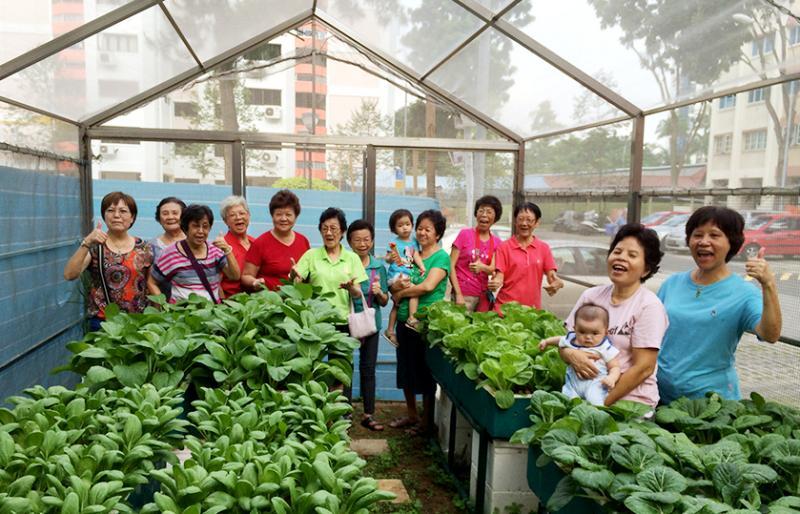 20210721 farm 1.jpg