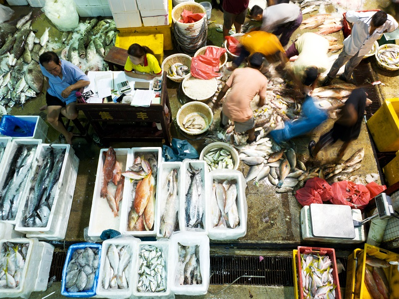 20210729-Jurong Fishery Port.jpg