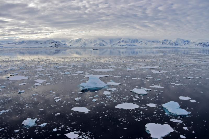 20210810 Antarctica.jpg