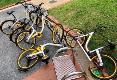 oBike退出新加坡市场,该公司的脚踏车散落在全岛各处,谁来处理?(新明日报)